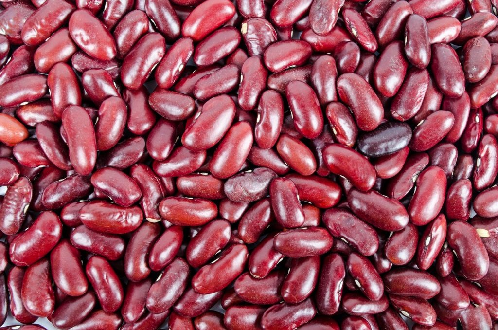 Kidney Beans, Salads, Beans