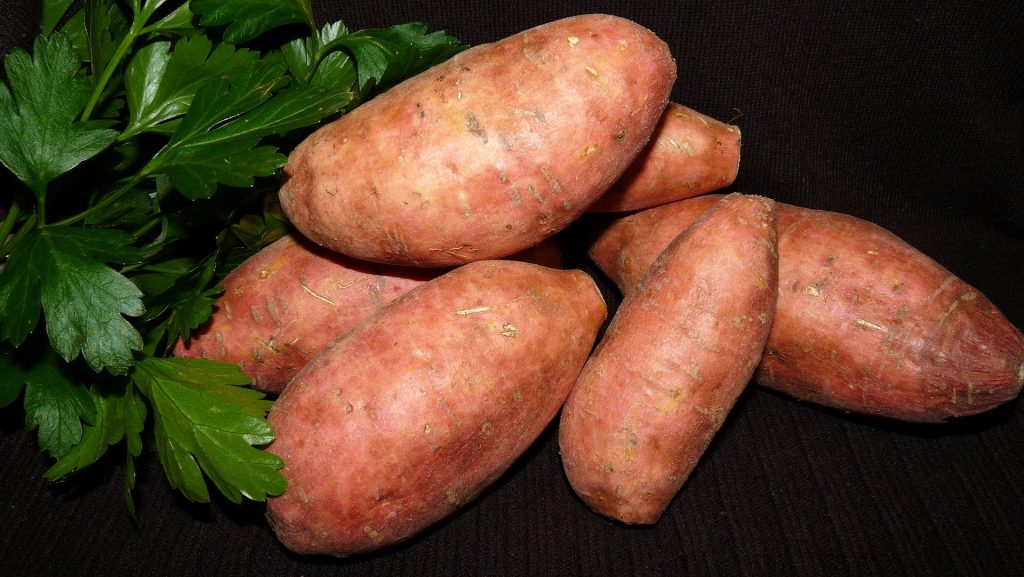Sweet Potato, High Protein Foods, Roasted
