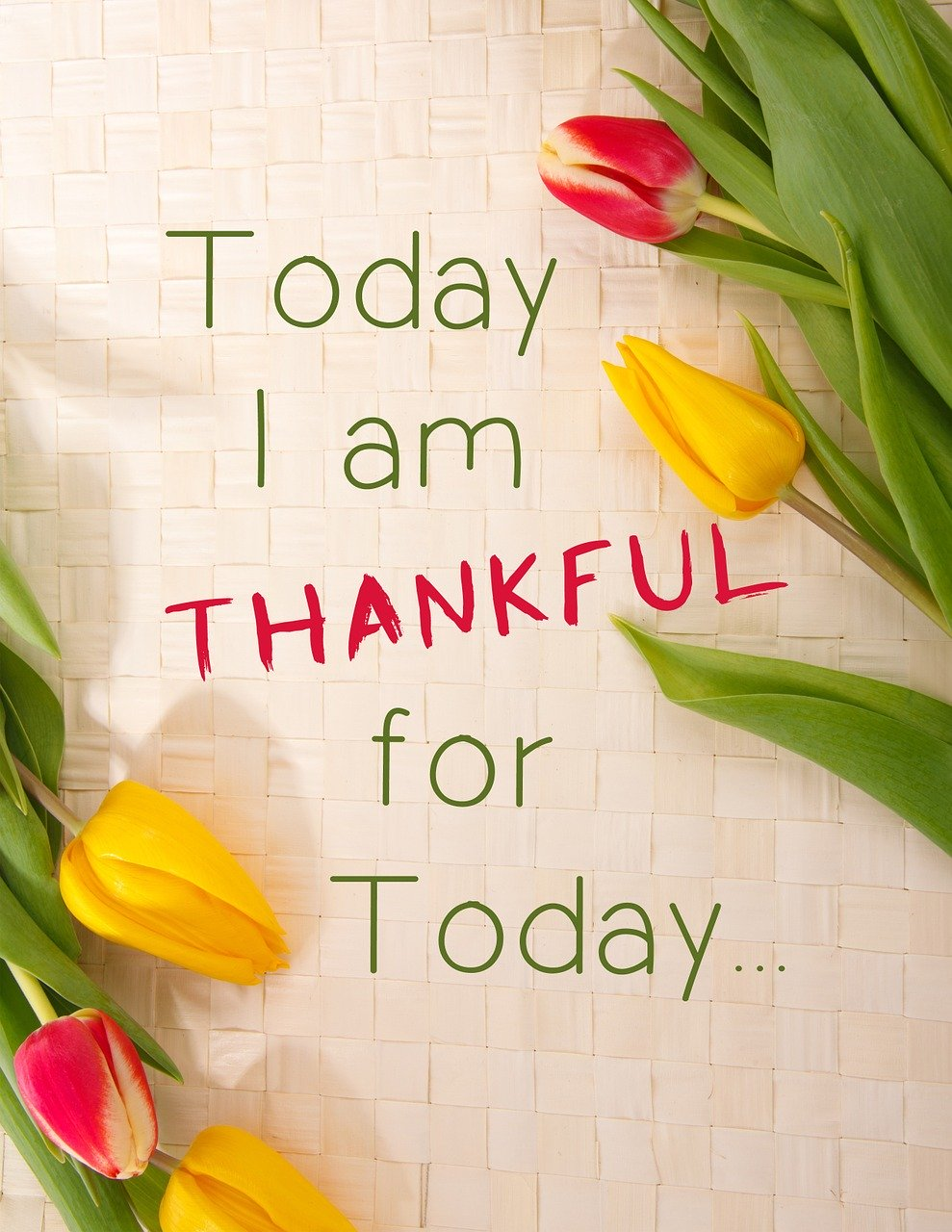 """yellow and red tulips around the words """"today i am thankful for today"""", grateful, thankful, appreciation, positive thinking, coping strategies"""