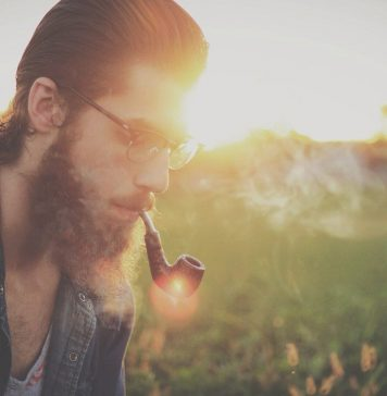 bearded man with glasses and a high pomp, smoking a pipe in a meadow as the sun glares brightly in the background