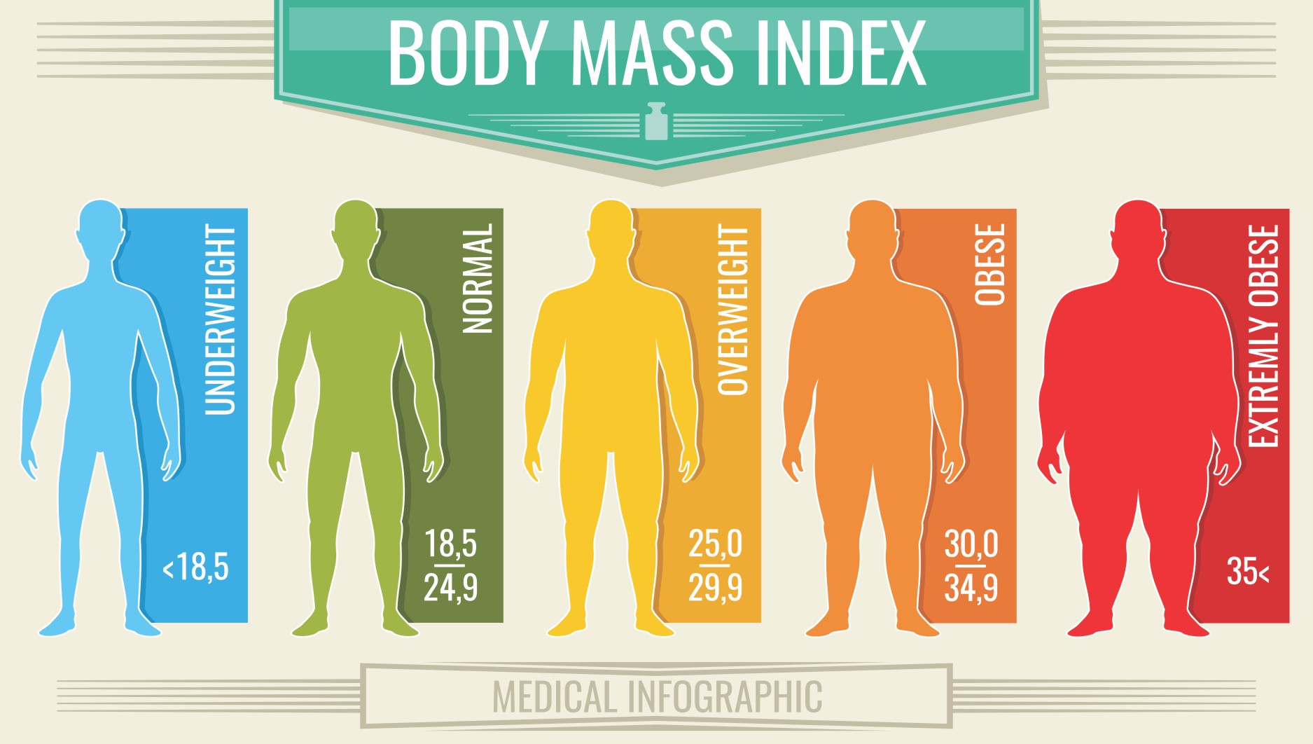 graphic of the various bmi categories, health, weight status, obesity