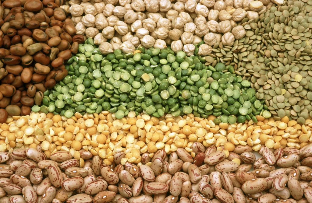 Legumes, Pulses, Beans, Seeds, Weight Loss Foods