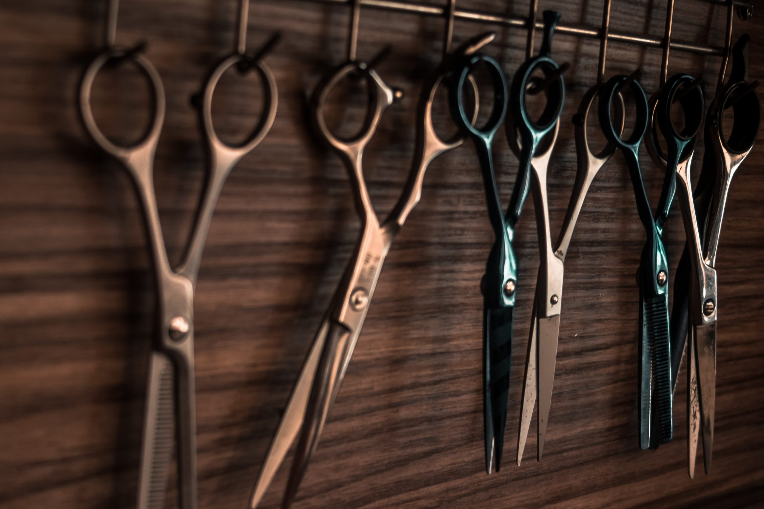 pairs of scissors hanging in a row